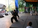 Dni Gminy Lubenia (27.06.2010)