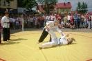Tydzień Sportu - SP Budziwój 2009