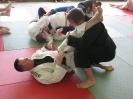 Seminarium BJJ i MMA (14.05.2011 Lubenia))