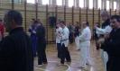 Seminarium Szkoleniowe WMAA-ROC Polska 2012